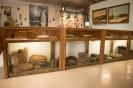 het Visserij Museum in Breskens_9